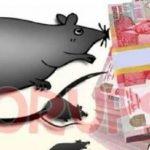 """Korupsi DAK Bulukumba Rp49 """"Kabur"""", Kejati Diminta Transparan Akses Informasi Perkara"""